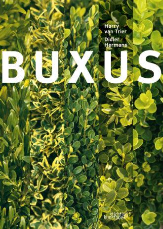buxus-ned