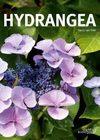 hydrangea_cover_def